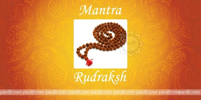 What are Rudraksh Mantras in hindi and english