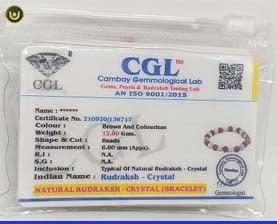 Rudraksha Crystal Bracelet