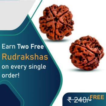 Free Rudraksha